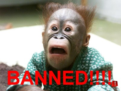 banned-chimp